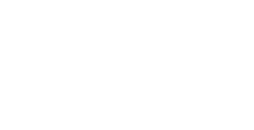 Wonderfull Puppies